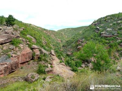 Valle de los Milagros - Parque Natural Cueva de la Hoz;mejores rutas senderismo madrid toledo noctur